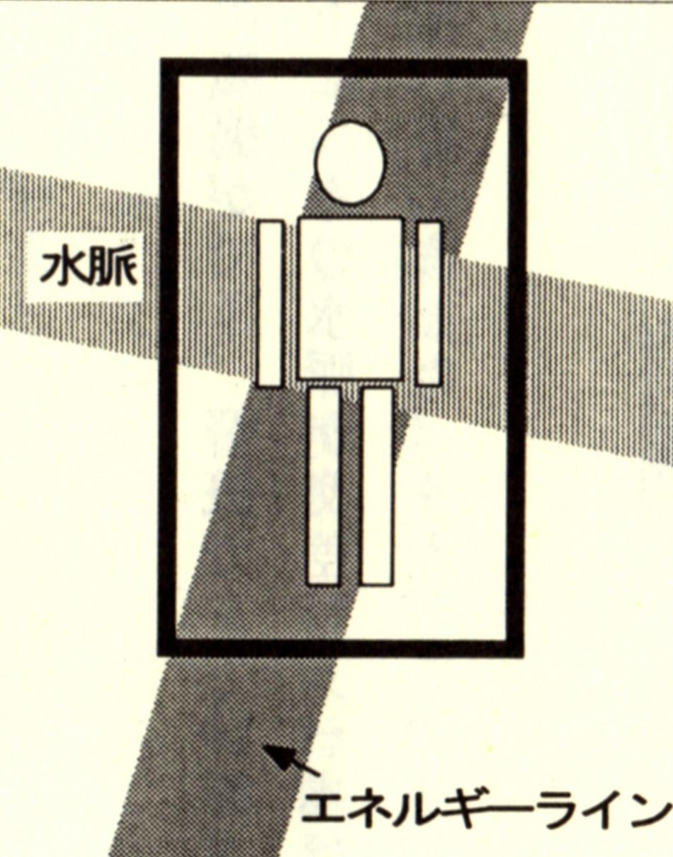 ジオパシックストレス実例01